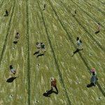 'Jour 2', huile sur toile, 100 cm x 100 cm, 2016